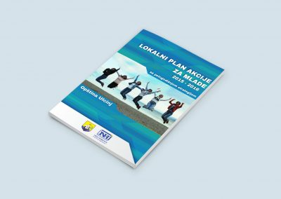 Local Youth Action Plan
